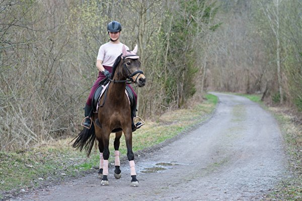 Pictures horse Helmet Girls Roads Sitting 600x400 Horses female young woman sit