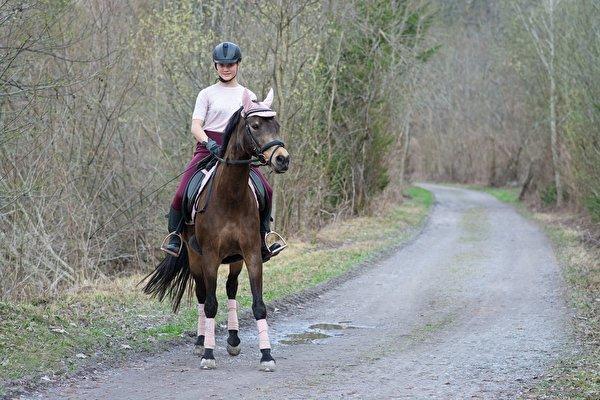 zdjęcia Konie Kask młoda kobieta droga Siedzi 600x400 koń dziewczyna Dziewczyny młode kobiety Drogi siedzą