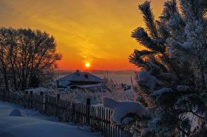 Hintergrundbilder Jahreszeiten Winter Sonnenaufgänge und Sonnenuntergänge Schnee Ast Fichten Sonne Natur