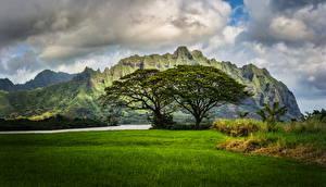 Image Scenery Mountains Grass Clouds Hawaii Oahu Nature