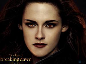 Bakgrundsbilder på skrivbordet The Twilight Saga The Twilight Saga: Breaking Dawn Kristen Stewart Blick Ansikte Kändisar Unga_kvinnor