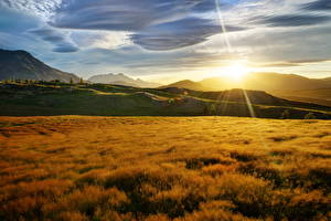 Pictures Sunrises and sunsets New Zealand Sky Rays of light Grass Sun Nature