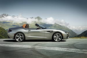 Picture BMW Silver color Expensive Convertible Side Asphalt Roadster 2012 Roadster Zagato Cars