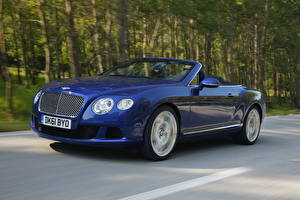 Wallpaper Bentley Blue Expensive Cabriolet 2012 Continental GTC W12 Cars