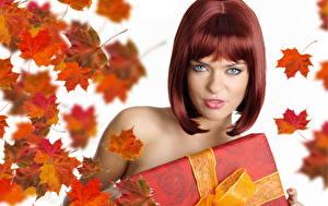 Fonds d'écran Feuillage Cheveux Roux Fille Érable Coiffures Filles