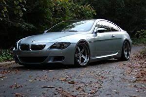 Images BMW Autumn Silver color M6 E63 Cars