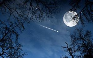 Hintergrundbilder Himmel Stern Mond Ast Weltraum