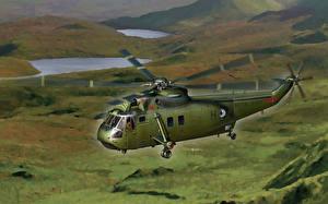 Fotos Hubschrauber Gezeichnet Flug WS-61 Sea King Commando Luftfahrt