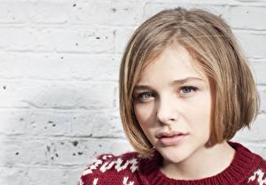 Hintergrundbilder Chloe Grace Moretz Starren Gesicht Dunkelbraun Haar Schön Frisur Prominente Mädchens