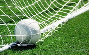 Hintergrundbilder Fußball Sport