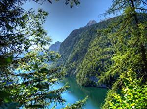 Hintergrundbilder Landschaftsfotografie Deutschland Gebirge Bayern Ast Natur