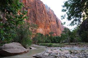 Fotos Park Vereinigte Staaten Gebirge Zion-Nationalpark Felsen Utah
