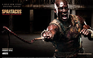 Desktop wallpapers Spartacus: Blood and Sand Man Warrior Negroid Movies