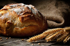 Bilder Backware Brot Weizen Ähre Lebensmittel