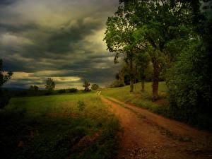 Photo Roads Trees Thundercloud Nature