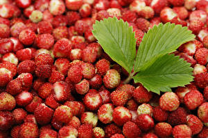 Hintergrundbilder Obst Viel Nahaufnahme Hügel-Erdbeere