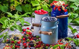 Hintergrundbilder Obst Heidelbeeren Himbeeren Johannisbeeren Stachelbeere Blatt das Essen