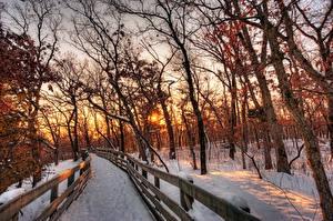 Hintergrundbilder Jahreszeiten Winter Sonnenaufgänge und Sonnenuntergänge Bäume Zaun Schnee Ast Natur