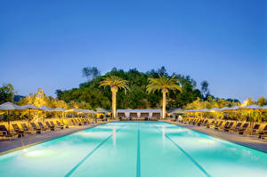 Wallpapers Resorts Water Palms Pools Sunlounger Cities