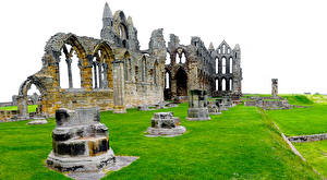 Bilder England Ruinen Gras Whitby Abbey North Yorkshire