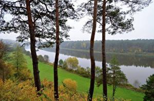 Fotos Fluss Litauen Bäume Birstonas Natur