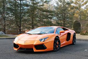 Image Lamborghini Orange Luxury aventador lp700-4 auto