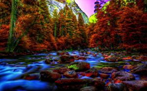 Bilder Park USA Steine Yosemite HDR Natur