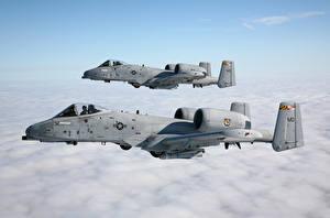 Hintergrundbilder Flugzeuge A-10 Thunderbolt II Schlachtflugzeug Flug