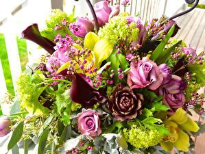 Bilder Sträuße Rosen Lavendel