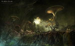 Fotos The Elder Scrolls The Elder Scrolls Online Pilze Natur computerspiel