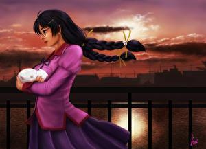 Bilder Morgendämmerung und Sonnenuntergang Kätzchen Brünette Zopf Anime Mädchens