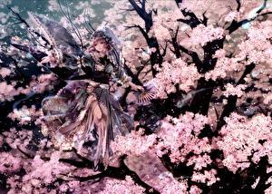 Fonds d'écran Touhou Collection Sakura Kimono Fantasy Anime Filles