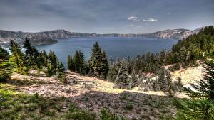 Fotos USA See Landschaftsfotografie HDRI Kalifornien Fichten Natur