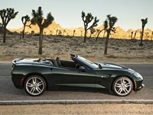 Bilder Chevrolet Grün Seitlich Cabrio 2014 Corvette C7 Stingray Autos