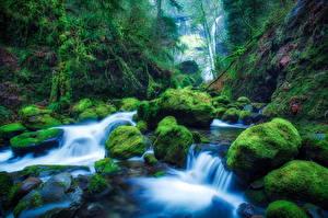 Fotos USA Wasserfall Steine Wasser HDR Laubmoose Elowah Falls Oregon Natur