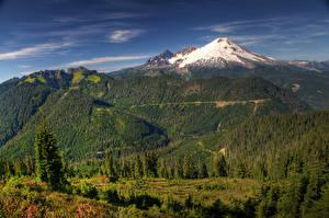 Bilder USA Landschaftsfotografie Gebirge Wälder Washington Fichten HDR Mount Baker-Snoqualmie Forest Natur