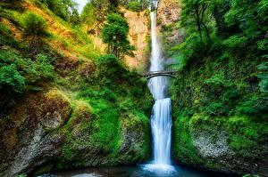 Bilder Vereinigte Staaten Wasserfall Brücken HDR Multnomah Natur