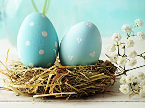 Picture Holidays Easter Eggs Two Light Blue