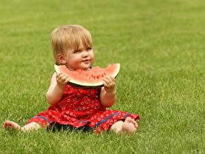 Fotos Wassermelonen Kleine Mädchen Gras Kleid Sitzt Kinder