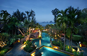 Wallpapers Tropics Spa town Pools Palm trees Night time Nature