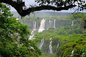 Hintergrundbilder Brasilien Wasserfall Ast Iguazu Natur