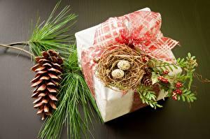 Fotos Feiertage Geschenke Zapfen Nest Eier Ast