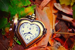Pictures Clock Pocket watch Closeup Leaf Heart
