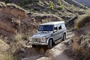 Pictures Mercedes-Benz Tuning Silver color 2012 G350 W463 BlueTEC automobile