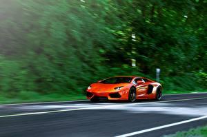 Photo Lamborghini Orange aventador lp700-4 Cars