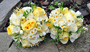 Photo Bouquets Roses Camomiles 2 Flowers