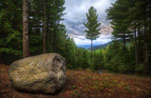 Bilder USA Wälder Steine HDR Adirondack Mountains Natur