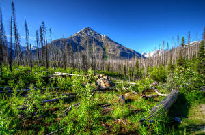 Hintergrundbilder USA Park Gebirge HDR Kootenay Natur