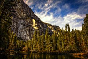 Fotos USA Park Gebirge Yosemite Fichten HDR Natur