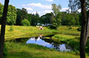 Bilder Litauen Parks Sommer Teich Gras Trakai Natur